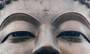 TUỆ GIÁC – Trungram Gyaltrul Rinpoche