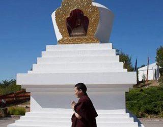 Điều gì ngăn con nhận ra bản tánh chân thật của con, tức là Phật Tánh, Karmapa